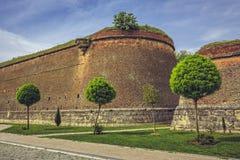 Paredes fortificadas medievais e árvores decorativas Fotografia de Stock Royalty Free