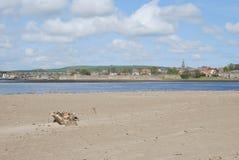 Paredes medievales de la ciudad de Berwick del estuario del tweed, puentes foto de archivo