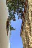 2 paredes y árboles Fotografía de archivo