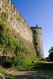 Paredes y torre medievales, con la hiedra Fotos de archivo