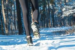 Pareggiando nell'inverno Passare la neve esegua la neve della foresta immagine stock libera da diritti
