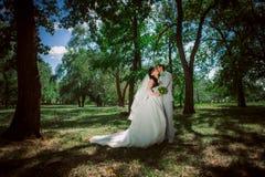 Pareja casada en el abarcamiento del bosque Foto de archivo