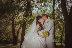 Pareja casada en el abarcamiento del bosque Imagen de archivo