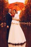 Pareja casada en el callejón mojado en parque Imagen de archivo libre de regalías