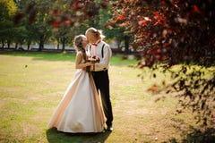 Pareja de matrimonios joven que se besa en un campo de hierba verde con los árboles fotografía de archivo