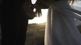 Pareja de matrimonios que lleva a cabo las manos en el sol que brilla almacen de video