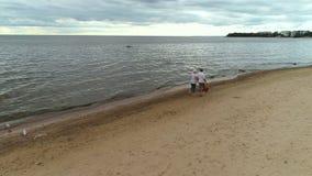 Pareja madura casada que camina en la playa y que mira en la distancia almacen de video