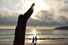 Pareja mayor o joven casada que camina por el mar en la playa sola en la puesta del sol que lleva a cabo las manos Tronco o rama  imágenes de archivo libres de regalías