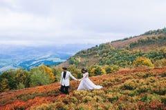 Pareja nuevamente casada que presenta en las montañas Imágenes de archivo libres de regalías