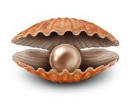 Parel in open shell royalty-vrije illustratie