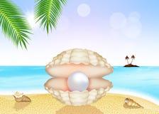 Parel in shell stock illustratie