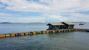 Parellandbouwbedrijf op Lombok stock foto's