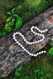 Parels op hout en grasachtergrond Royalty-vrije Stock Foto