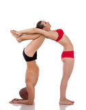 In paren gerangschikte yoga Organismen van het cijfer van de mensenvorm Stock Afbeeldingen