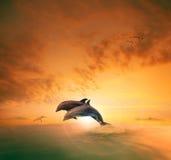 Paren van overzees die dophin door oceaangolf springen die medio ai drijven stock afbeelding