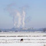 Parenco фабрики бумажной фабрики около Renkum в Нидерланд на выигрыше Стоковые Фото