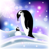 Parent and baby penguin in snowy background. With northern lights Royalty Free Stock Image