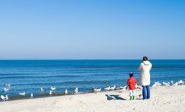 Parent and child on beach. Rear view of parent and child on sandy beach looking at seagulls in blue sea Stock Image