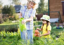 Parent and child watered the plants in the garden Stock Photography