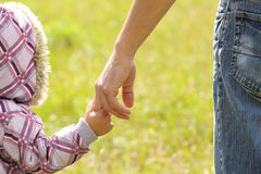 Parent holds the hand of a child royalty free stock photos