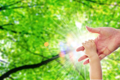 The parent's hand holds on one year old baby's hand behide the green tree and blur light close up Royalty Free Stock Images