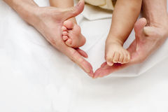 The parent's hands hold one year old baby feet close up over white Royalty Free Stock Image