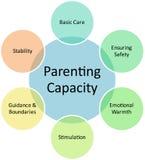 parenting диаграммы емкости дела Стоковая Фотография