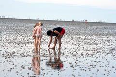 Parenting alla spiaggia Fotografia Stock Libera da Diritti
