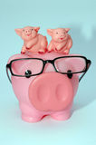 Parenting piggy style. With twins royalty free stock photography