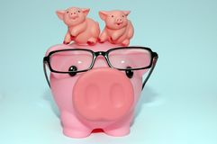 Parenting piggy style. With twins royalty free stock images