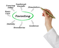 Parenting Royalty Free Stock Photo