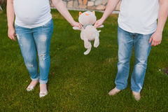 Parents with baby toy Stock Photo