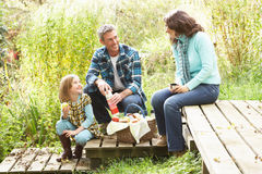 Parents And Child Having Picnic Stock Images