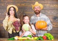 Parents and daughter celebrate autumn harvest festival. Family farm concept. Family farmers with harvest wooden stock image
