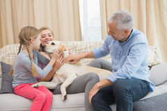Parents and daughter with pet labrador Royalty Free Stock Photos
