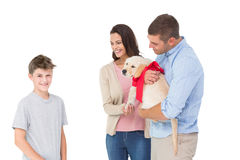 Parents gifting puppy to boy against white background Stock Photos