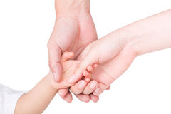 The parents hand holding the hands of children isolated on white