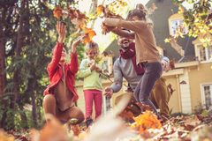 Parents have play with children at backyard. Stock Photography
