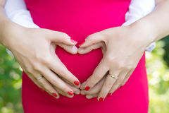 The parents hold hands on the tummy heart. The parents hold the tummy in the form of heart on a background of red dress Stock Photography