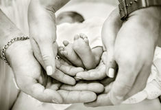 Parents holding baby feet in their hands Royalty Free Stock Photos