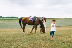 parents hugging near horse son covering eyes royalty free stock image