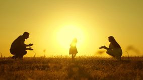Parents play with their little daughter. mother and Dad play with their daughter in sun. happy baby goes from dad to mom stock video
