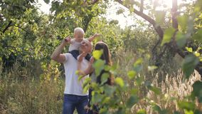 Parents playing with their son in the orchard. Parenthood theme stock footage