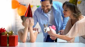 Parents presenting cute bunny for daughter, girl with eyes closed, b-day party stock photography