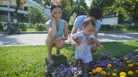 Parents show a bed of flowers to his son. Parents show a bed of flowers to his son n the park. Mother and father take turns are holding their son. Happiness in stock footage