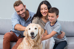 Parents and son petting dog Stock Photos