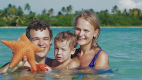 Parents and son in sea water holding starfish stock video footage