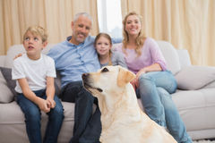 Parents and their children on sofa with puppy Royalty Free Stock Image