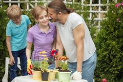 Happy family gardening together and taking care of nature. Parents and 8-year old child having fun in planting farm outdoor in spring sunny day, planting flowers Royalty Free Stock Photos