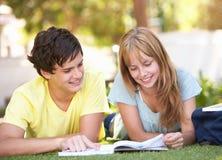 Pares adolescentes del estudiante que estudian en parque Imagen de archivo
